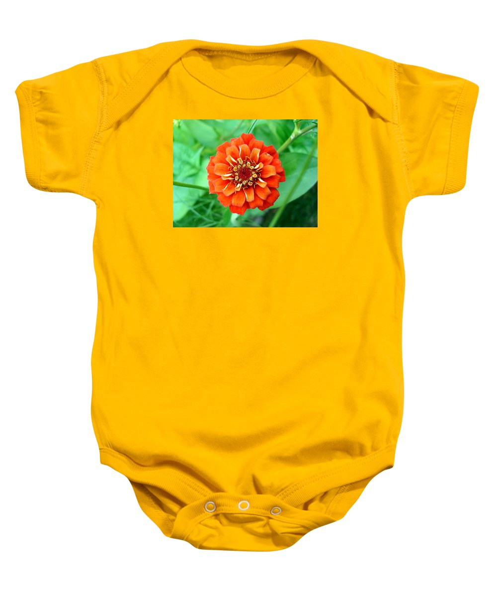 Dahlia Flowers Baby Onesie featuring the photograph Nepal Orange 2 by Nelson F Martinez
