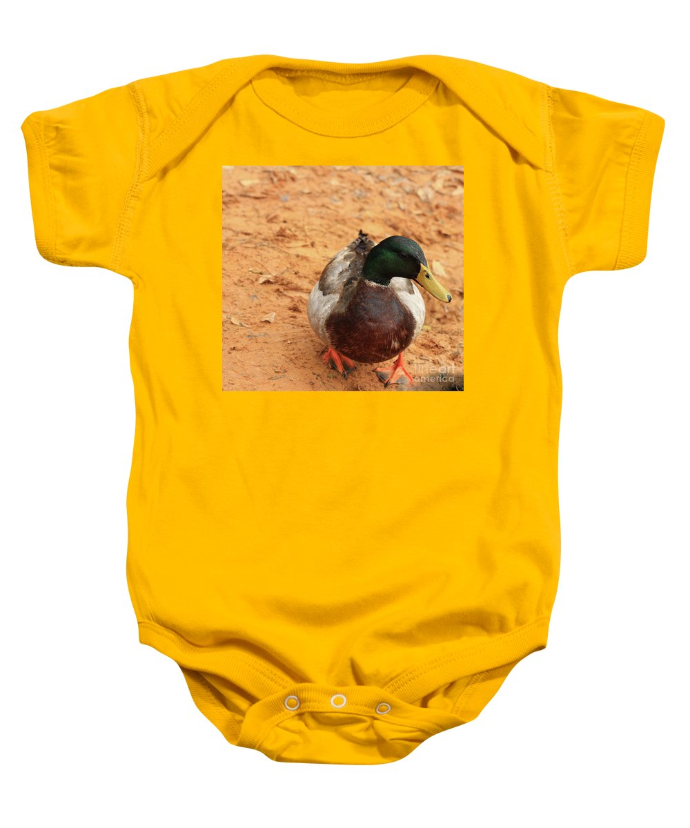 Mallard Photography Baby Onesie featuring the photograph Number 17 by Kim Henderson