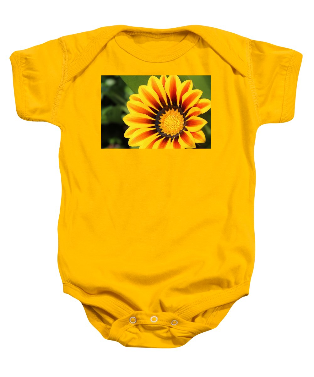 Flower Baby Onesie featuring the photograph Orange Delight by Susan Lotterer