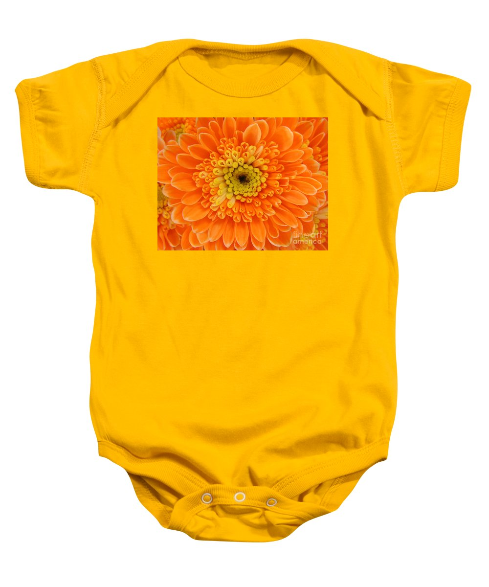 Nature Baby Onesie featuring the photograph Orange Mum In Detail by Lucyna A M Green