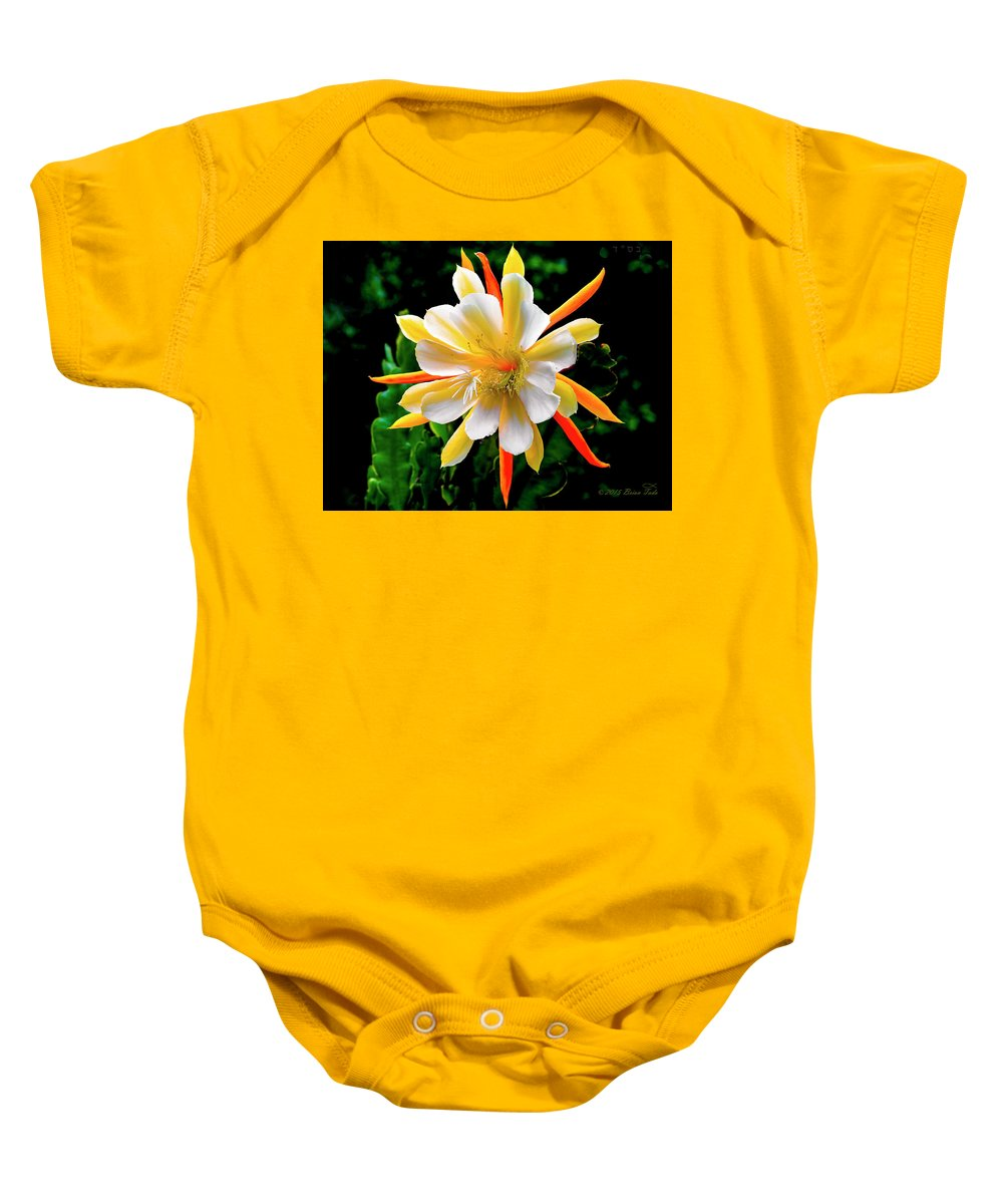 Flower Baby Onesie featuring the photograph Orchid Cactus Epiphyllum by Brian Tada