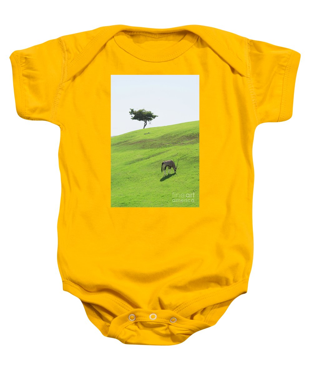 Oryx Baby Onesie featuring the photograph Oryx On Hill by Jim And Emily Bush