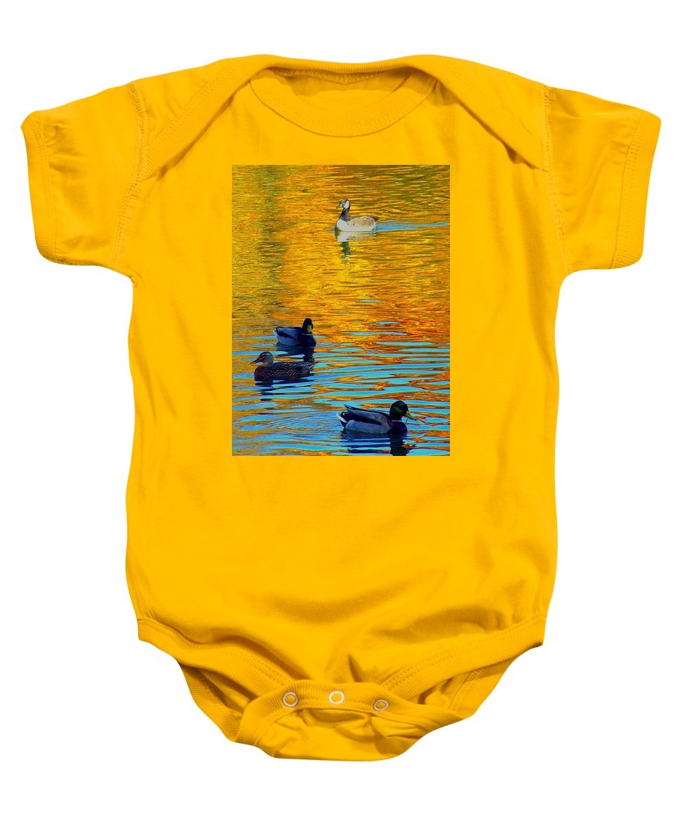 Ducks Malard Lake Gold Canada Geese Blue Baby Onesie featuring the photograph Possibilities by Jack Diamond