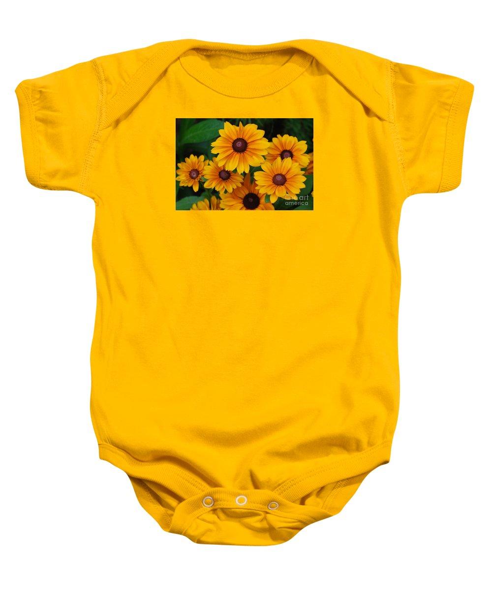 Rudbeckia Baby Onesie featuring the photograph Pretty Rudbeckia Flowers In Bloom by DejaVu Designs