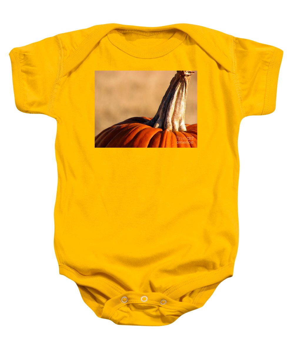 Pumpkins Baby Onesie featuring the photograph Pumpkin by Amanda Barcon