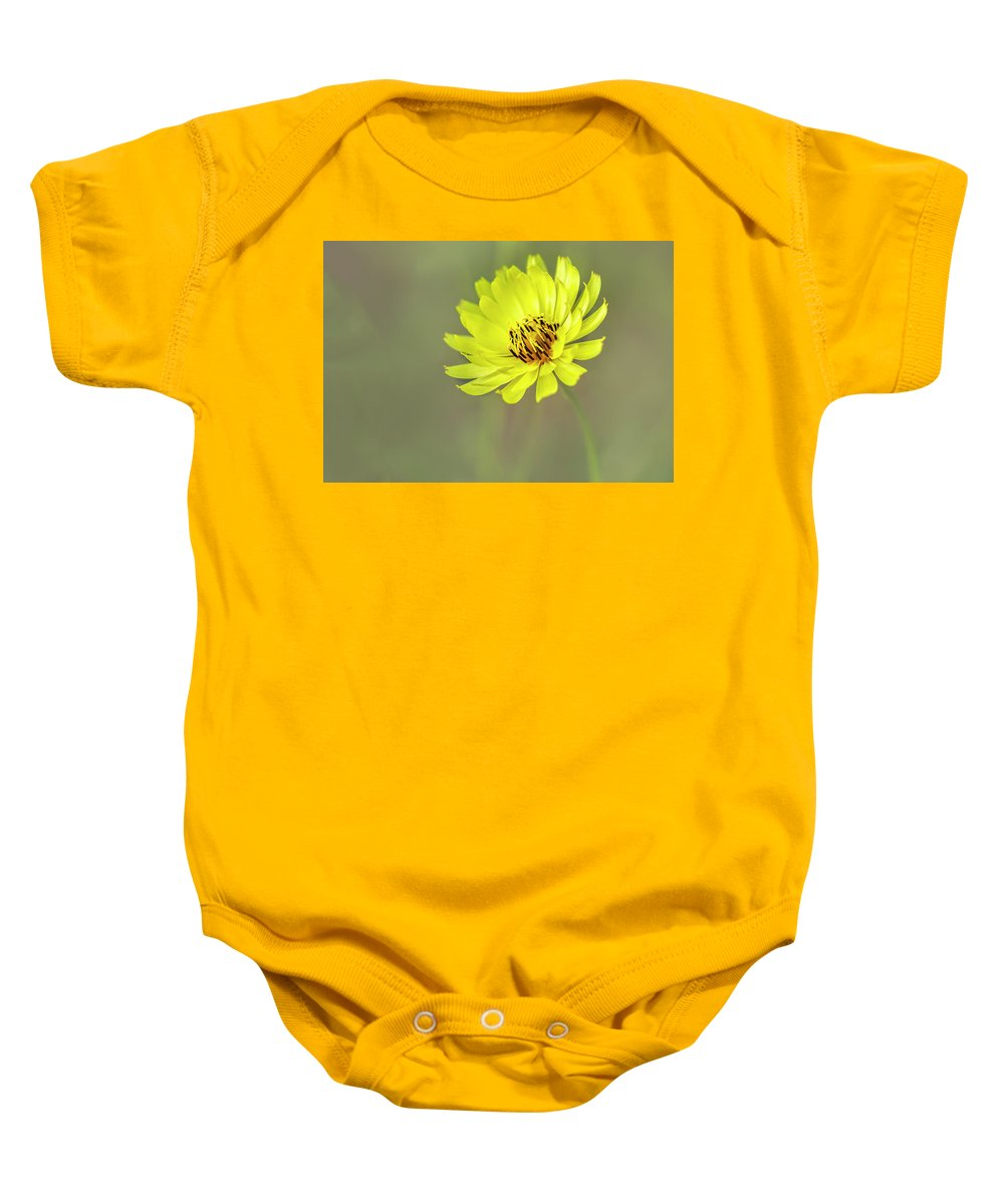 Asteraceae Baby Onesie featuring the photograph Putting My Best Face Forward. by Usha Peddamatham