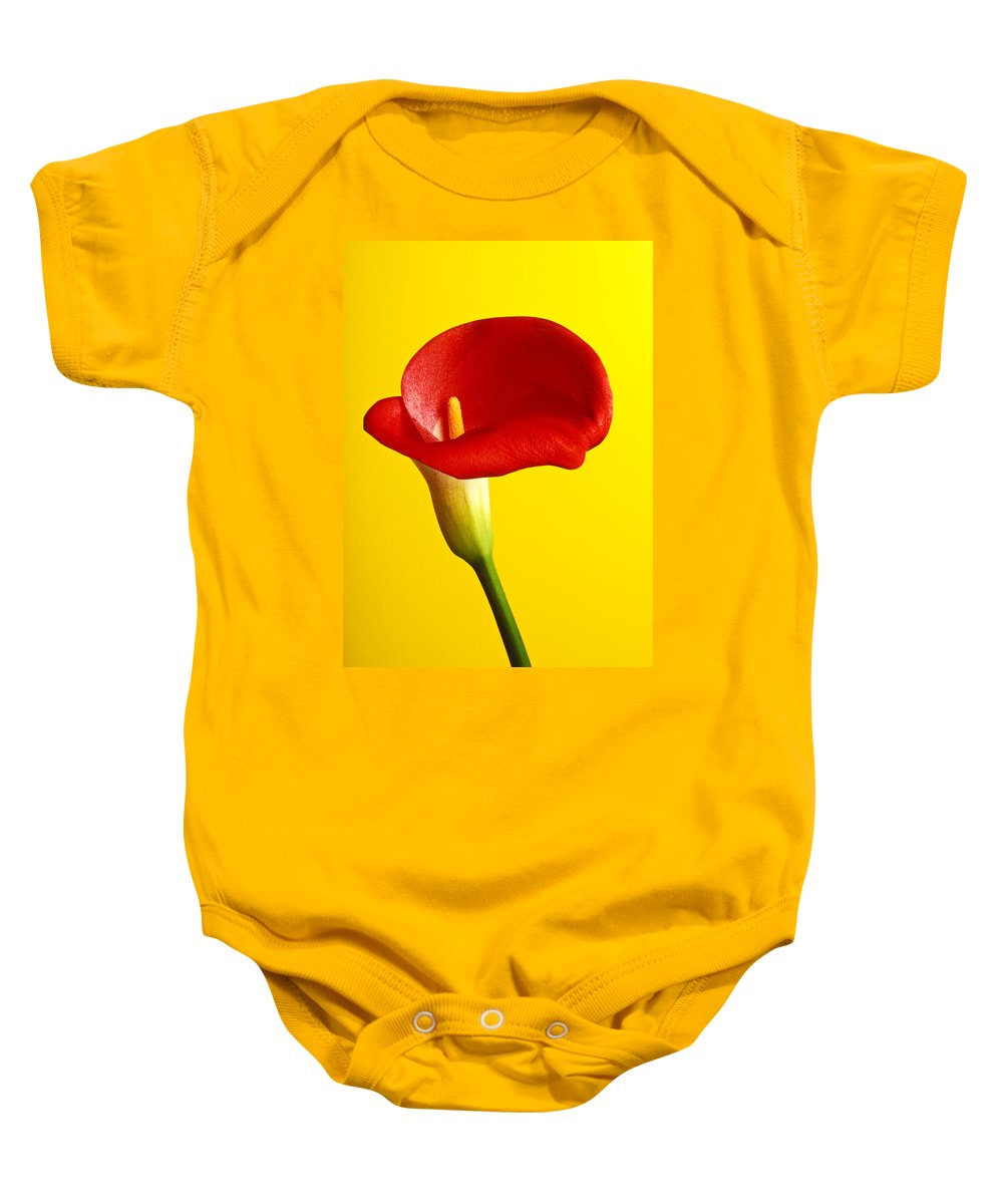 Red Yellow Flower Flowers Calla Lily Lilies Stem Yellow Graphic Design Bright Color Colors Colour Colours Colorful Distinctive Lilum Lilys Arum Bulb Close Up Detail Details Beauty Nature Beautiful Blossom Delicate Fragile Growing Vertical Plant Plants Concepts Decoration Bloom Blooming Botanical Floral Horticulture Floriculture Blossoming Flowering Petal Serenity Stamen Majestic Grow Unusual Baby Onesie featuring the photograph Red Calla Lilly by Garry Gay