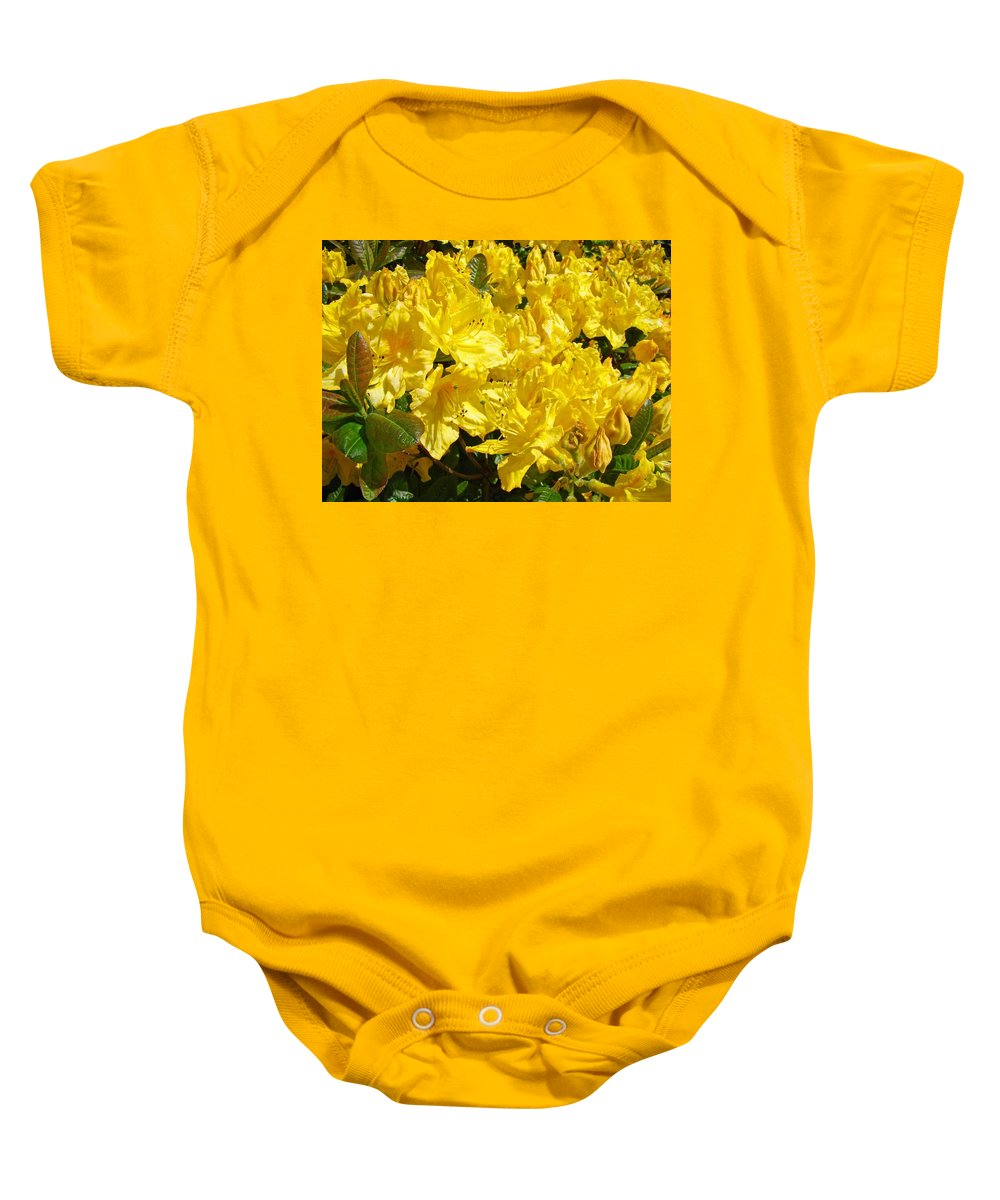 Rhodie Baby Onesie featuring the photograph Rhodies Yellow Rhododendrons Art Prints Baslee Troutman by Baslee Troutman