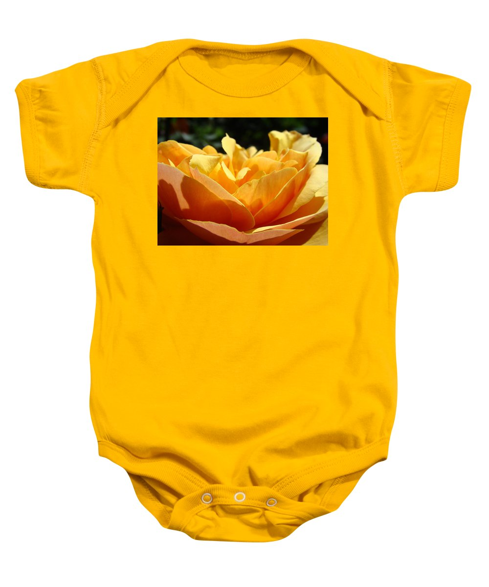 Rose Baby Onesie featuring the photograph Rose Sunlit Orange Rose Garden 7 Rose Giclee Art Prints Baslee Troutman by Baslee Troutman