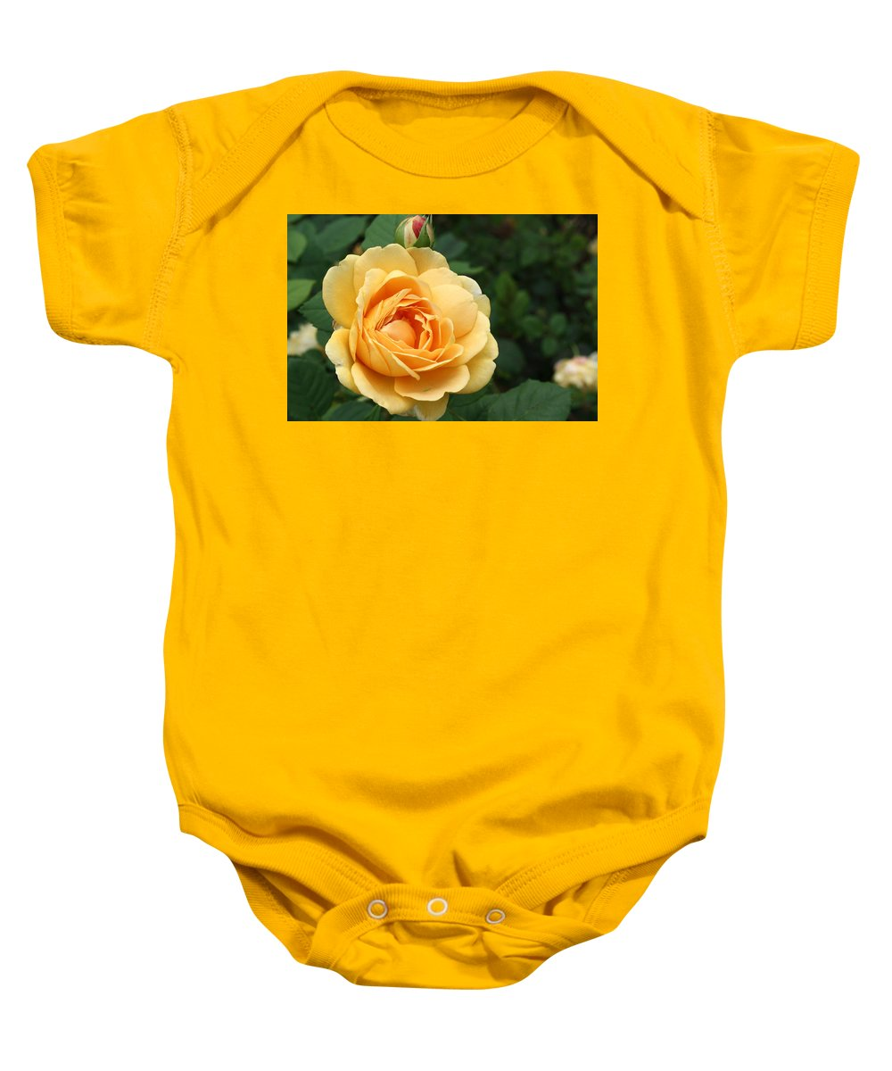 Baby Onesie featuring the photograph Rose by Teresa Doran