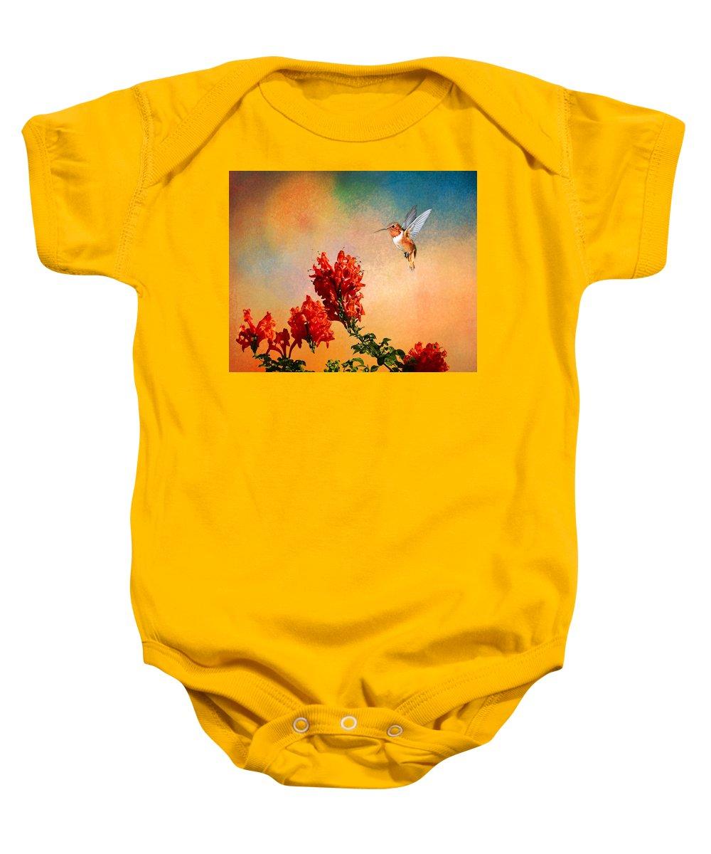 Rufous Baby Onesie featuring the photograph Rufous Dream by Lynn Bauer