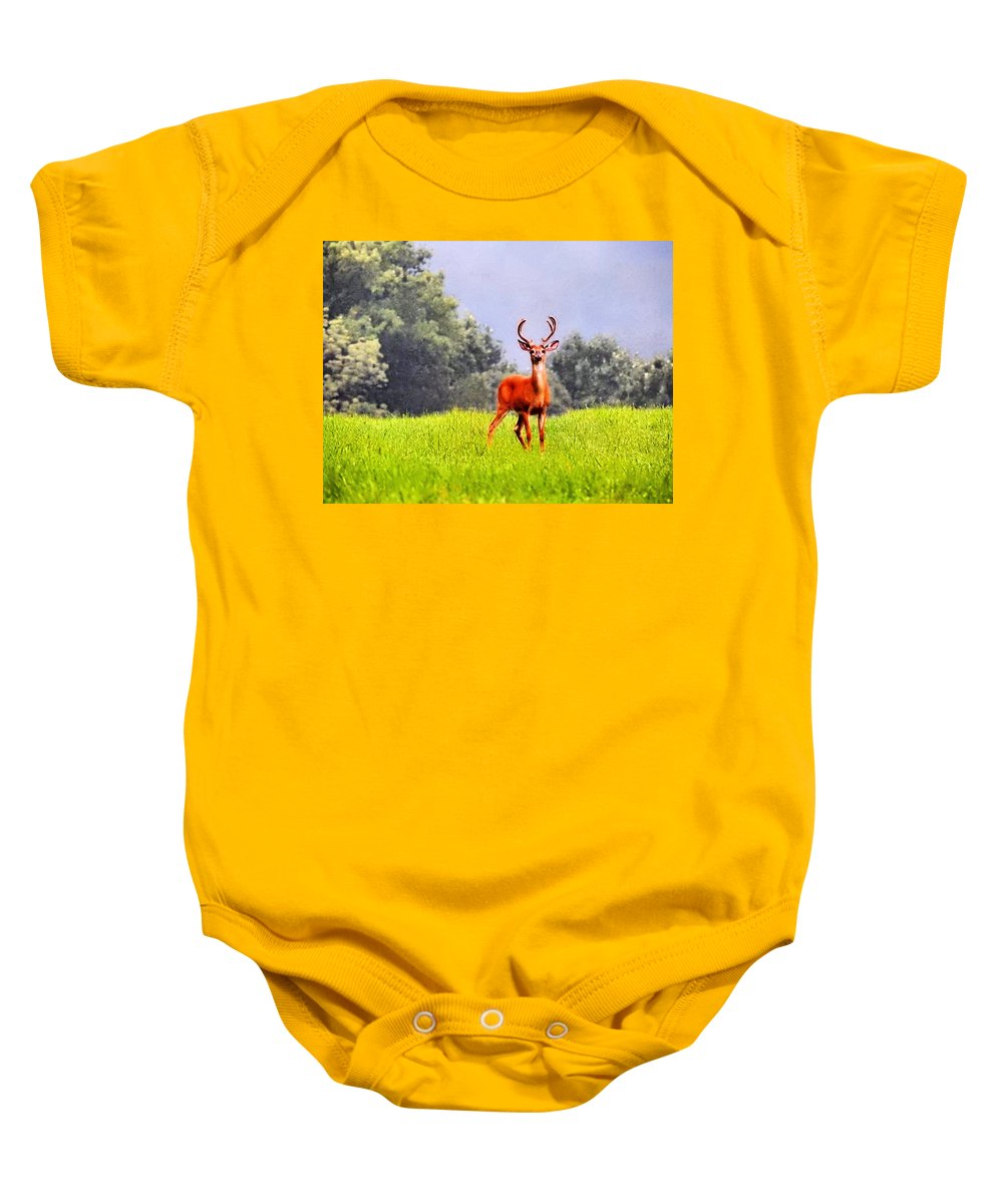 Wildlife Baby Onesie featuring the photograph Stud by Greg Kear
