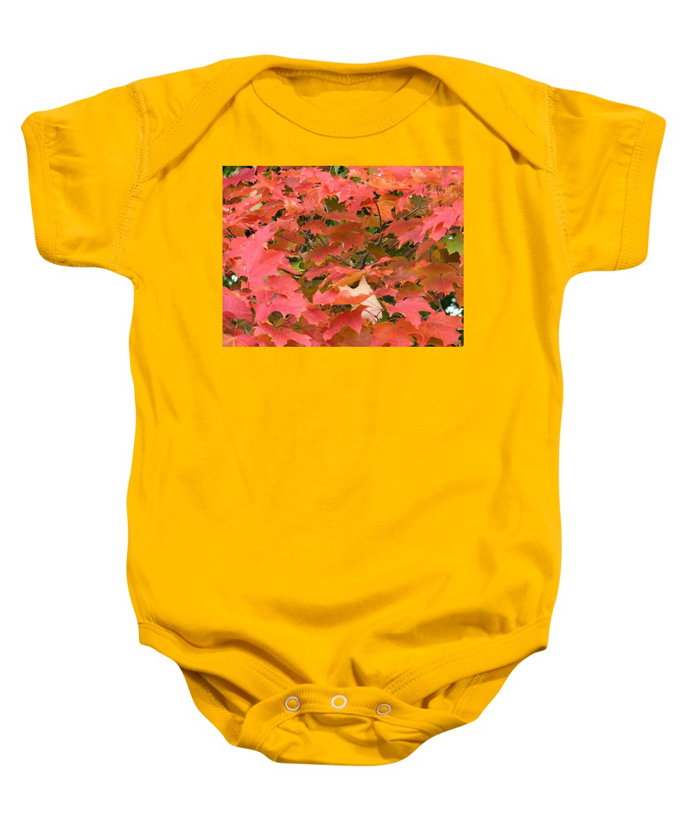 Leaves Baby Onesie featuring the photograph Sunburst by Kelly Mezzapelle