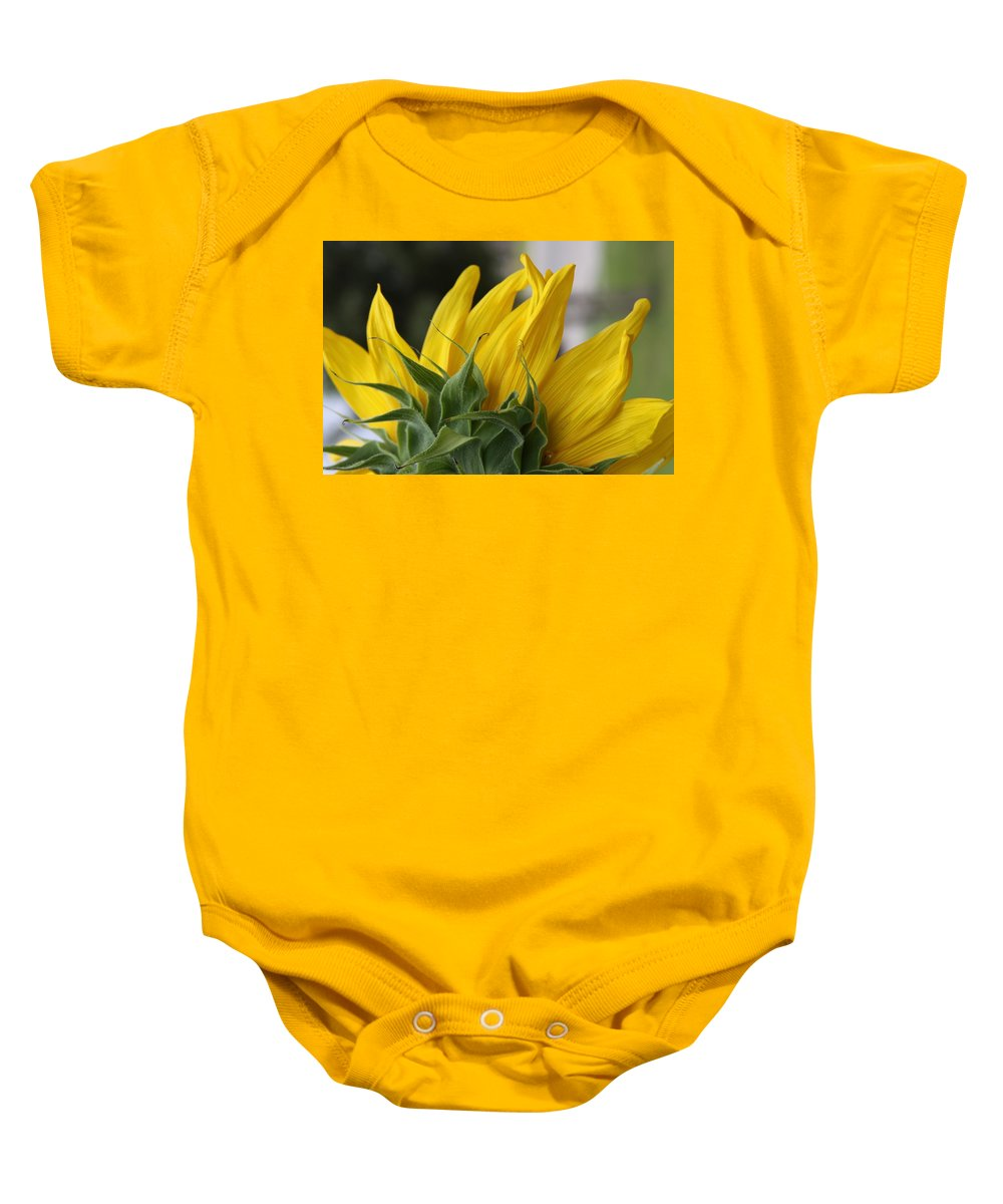 Sunflower Baby Onesie featuring the photograph Sunflower by Jill Smith