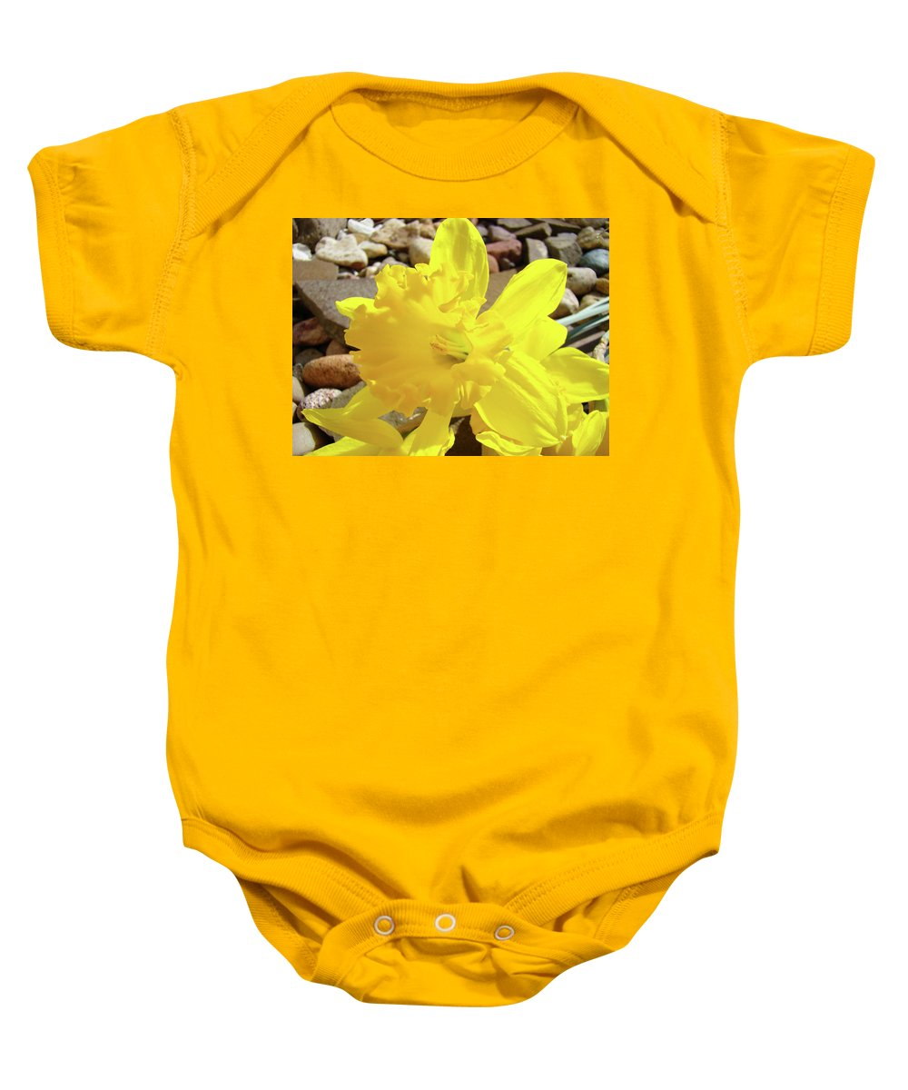 Spring Baby Onesie featuring the photograph Sunlit Daffodil Flower Spring Rock Garden Baslee Troutman by Baslee Troutman