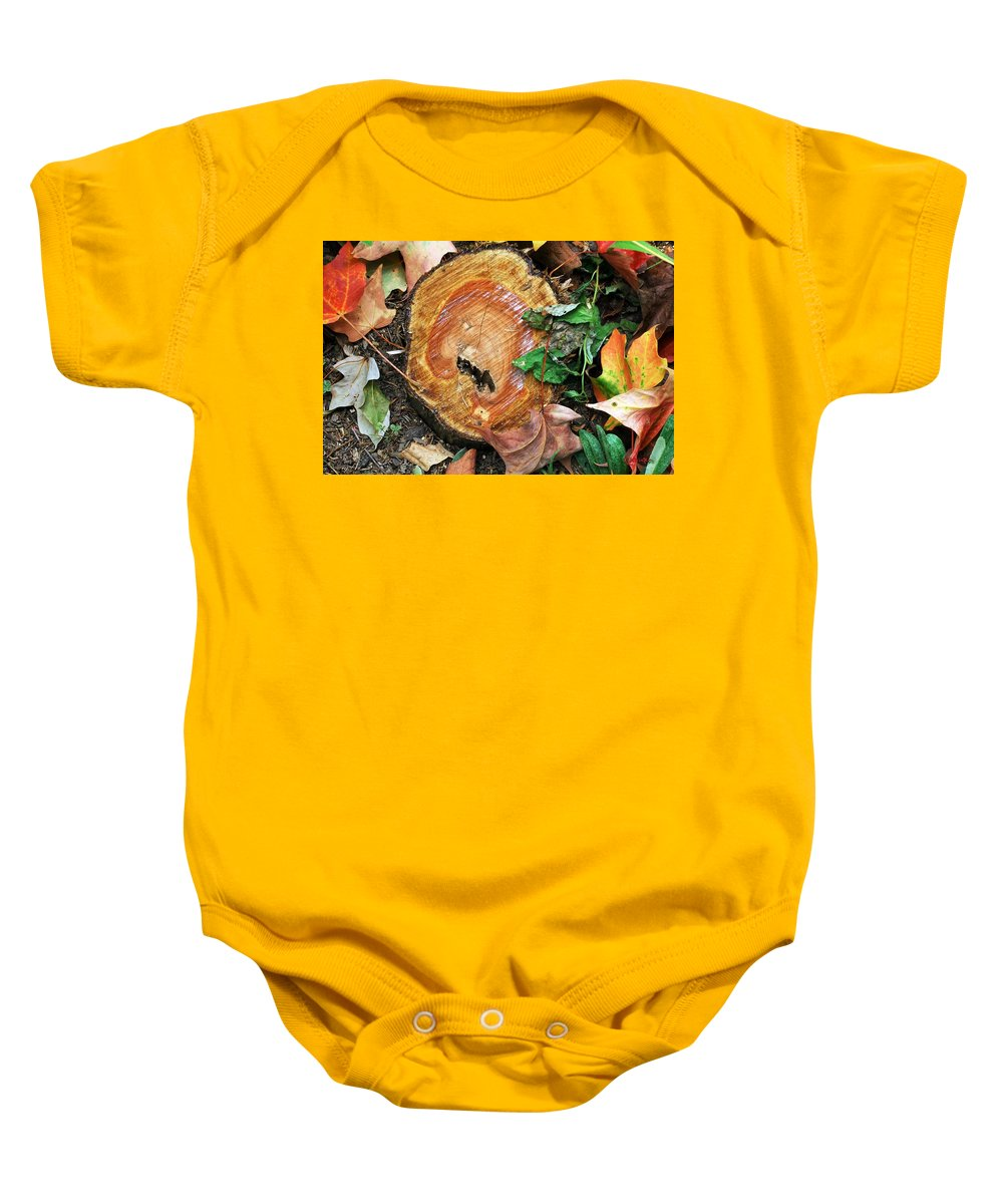 Autumn Baby Onesie featuring the photograph The Last Of The Old Yew by RC DeWinter