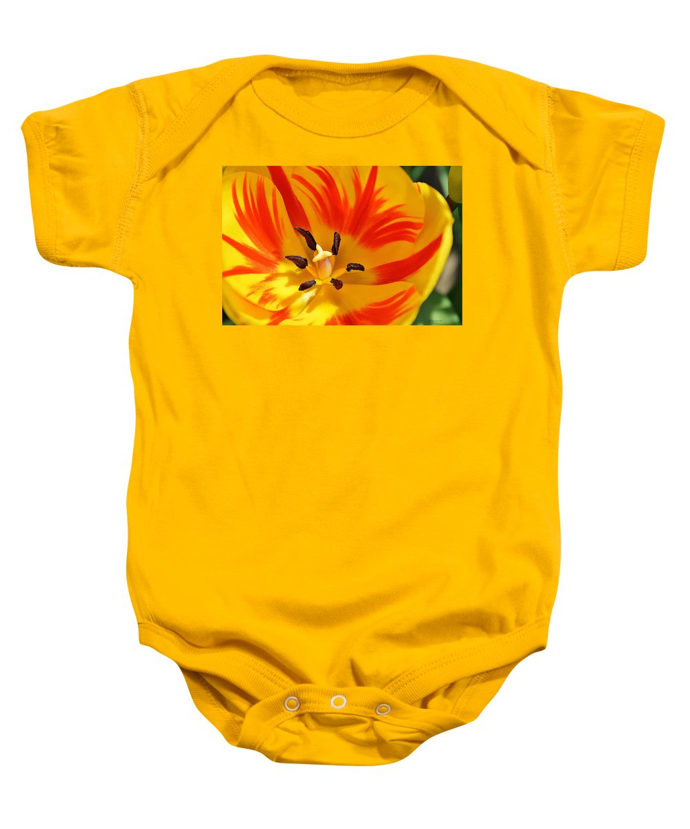 Tulip Baby Onesie featuring the photograph The Light Inside by Felicia Tica