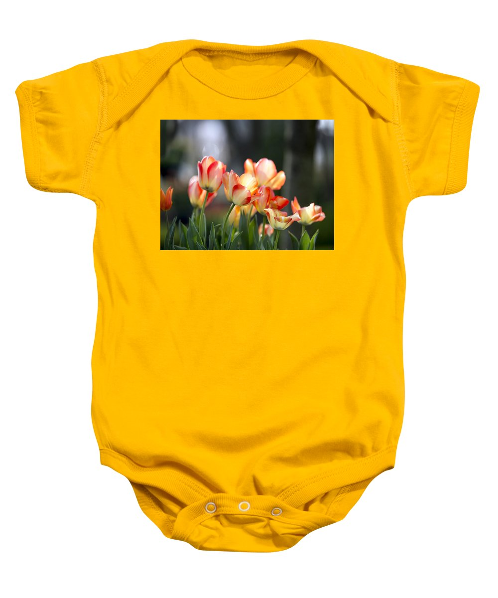 Tulip Baby Onesie featuring the photograph Tulips by AC Parsons