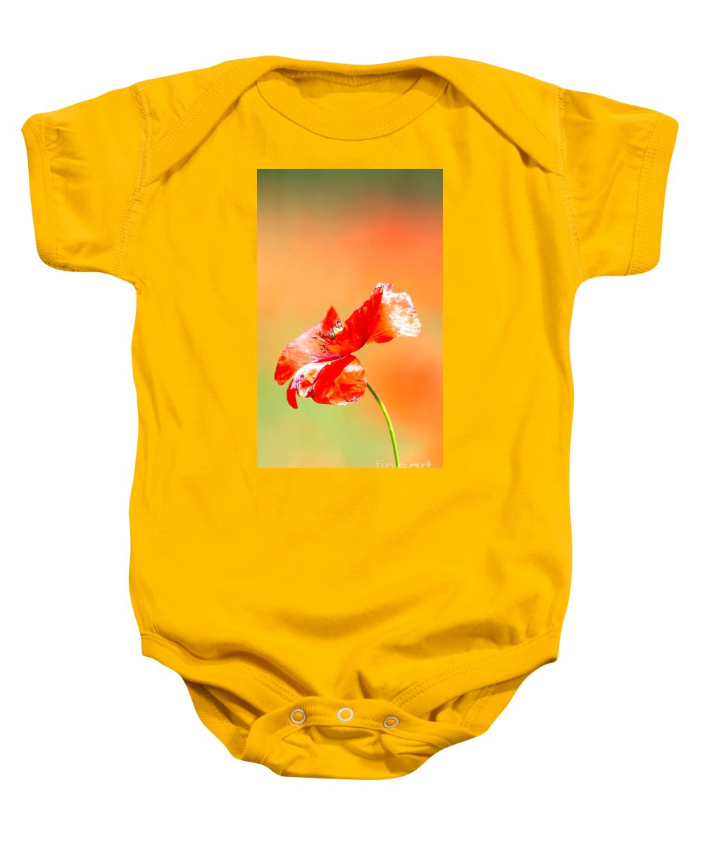 Poppy Baby Onesie featuring the photograph Tuscan Poppy by Nadine Rippelmeyer