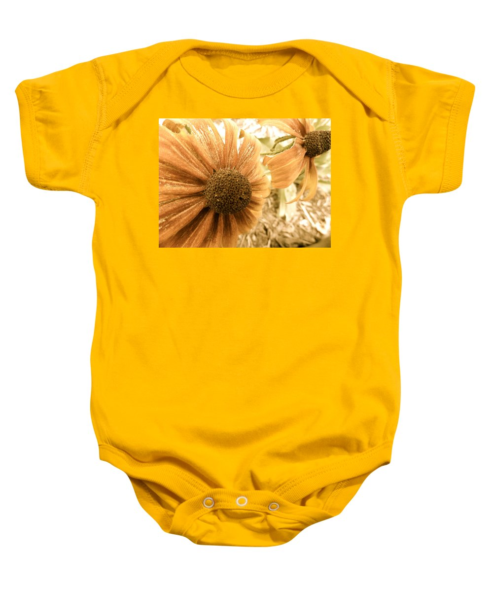 Flowers Baby Onesie featuring the photograph Vintage Black Eyed Susan by Trish Hale