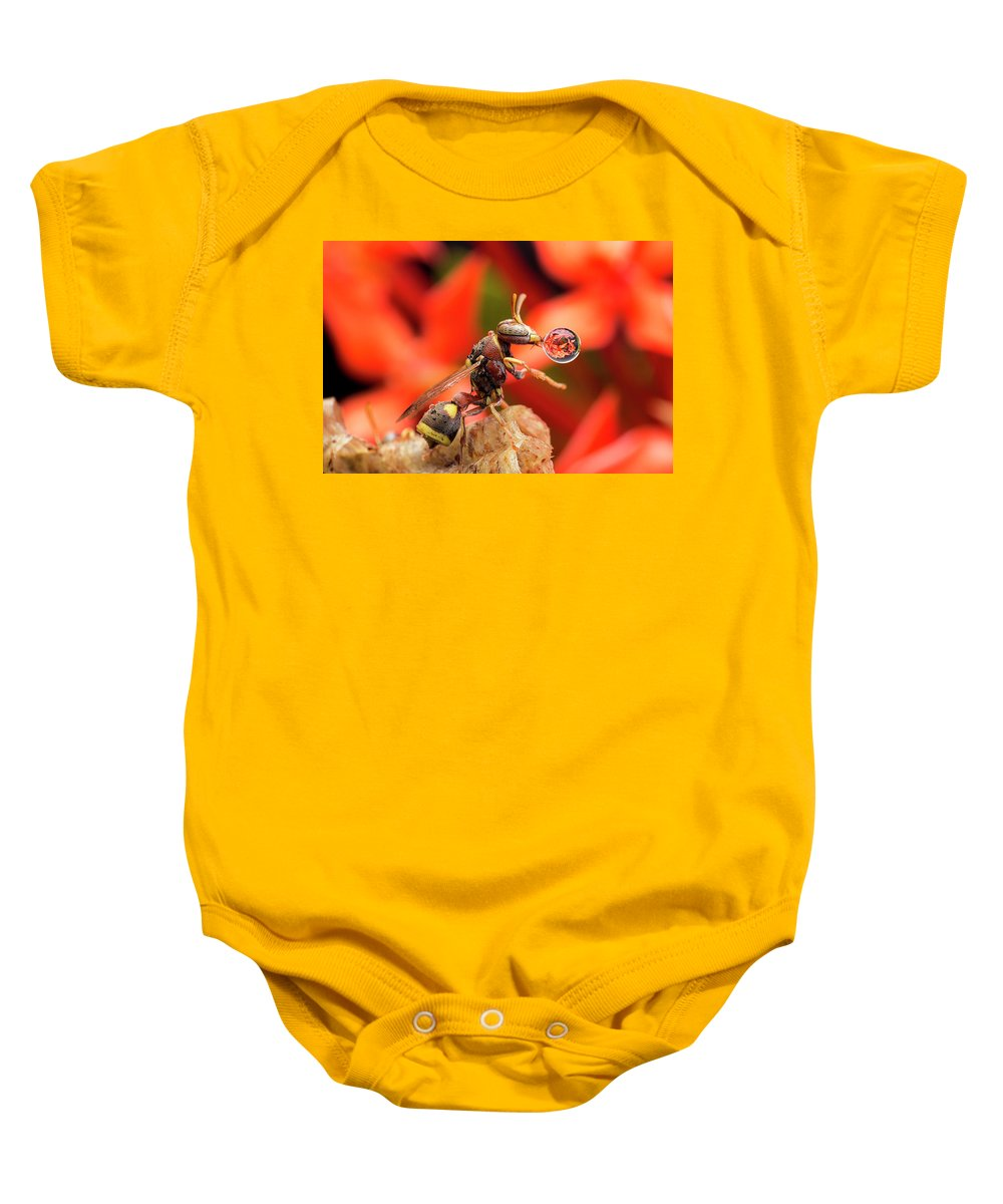 Macro Baby Onesie featuring the photograph Wasp Blowing Bubble 16057b by Lim Choo How