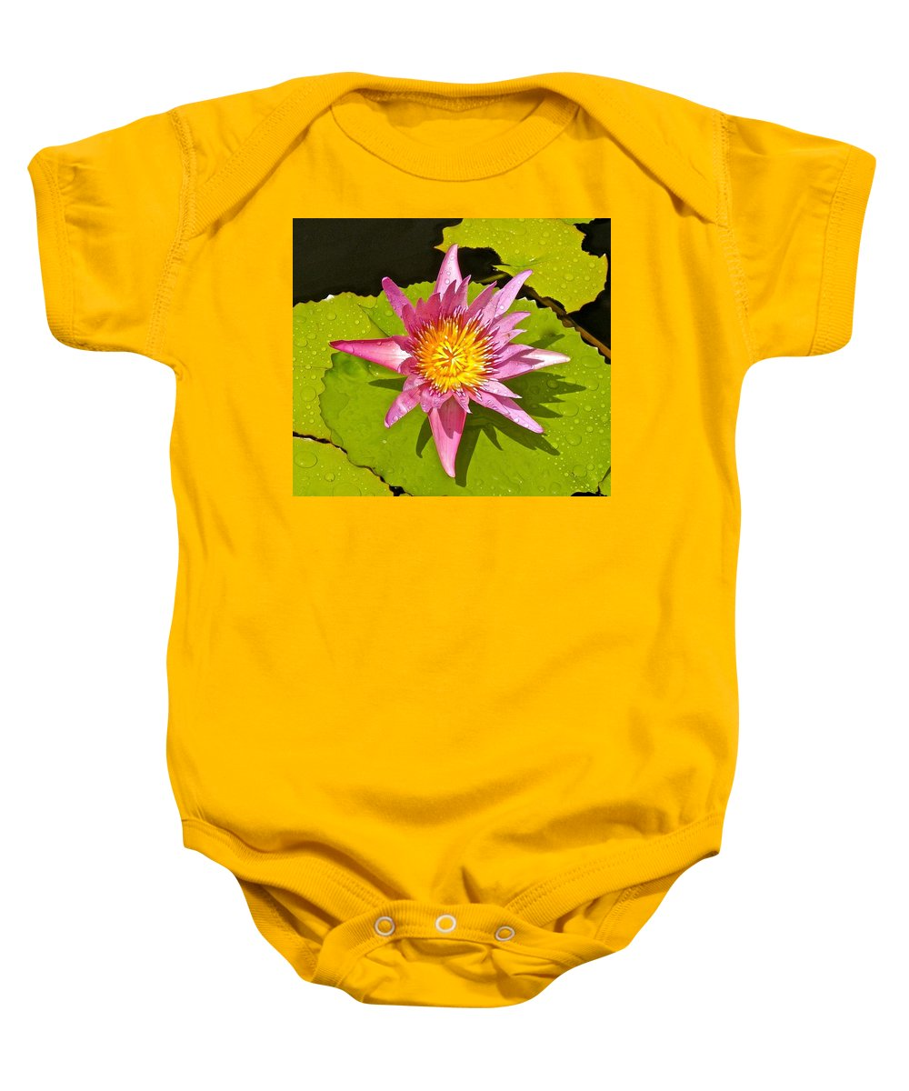 Lotus Baby Onesie featuring the photograph Water Lily After Rain 3 by Joe Wyman