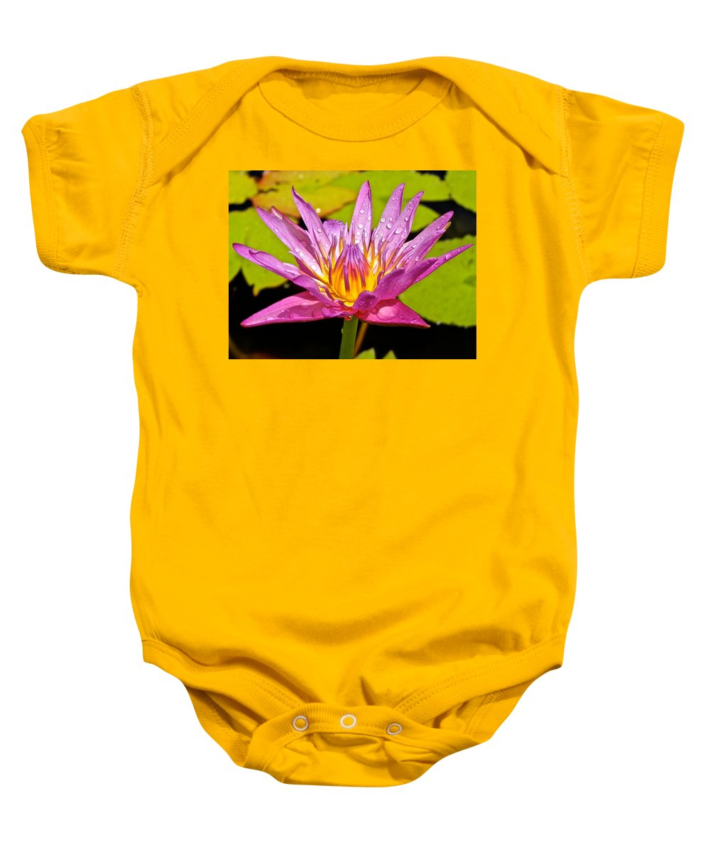 Lotus Baby Onesie featuring the photograph Water Lily After Rain by Joe Wyman