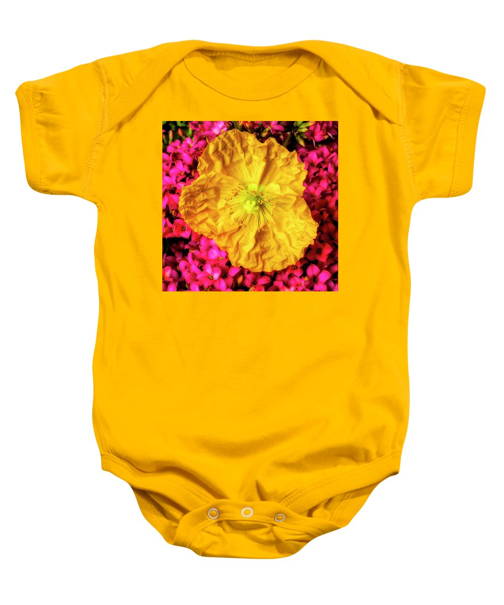 Icelandic Baby Onesie featuring the photograph Yellow Poppy And Kalanchoe Flowers by Garry Gay