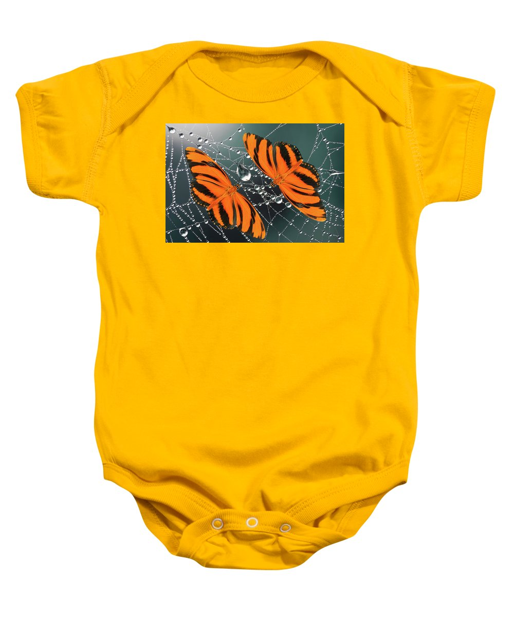 Butterfly Baby Onesie featuring the photograph Banded Orange Butterfly. by Karina Knyspel
