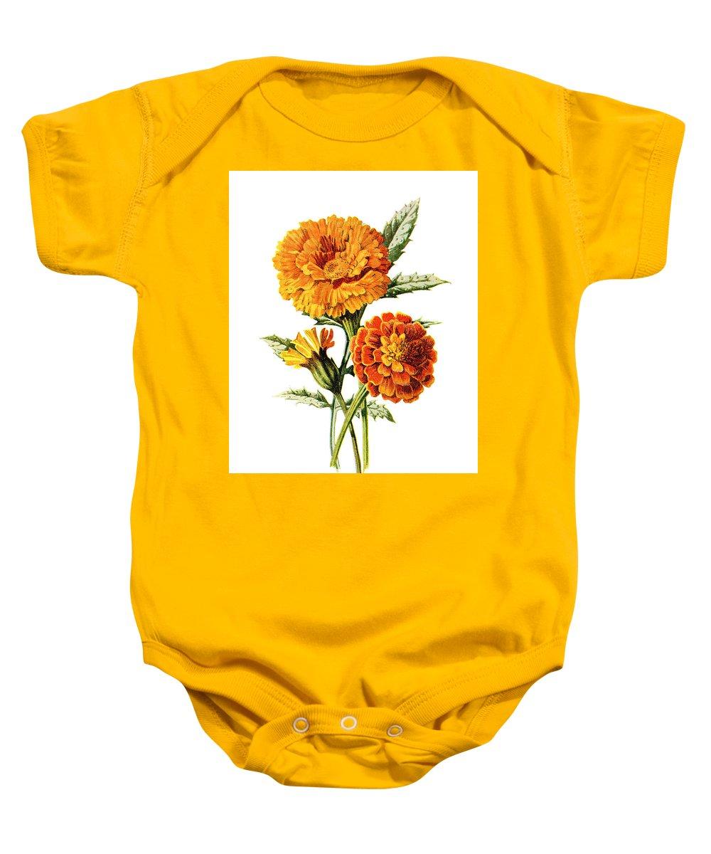 Jessamine Baby Onesie featuring the mixed media Marigold Flower by Naxart Studio