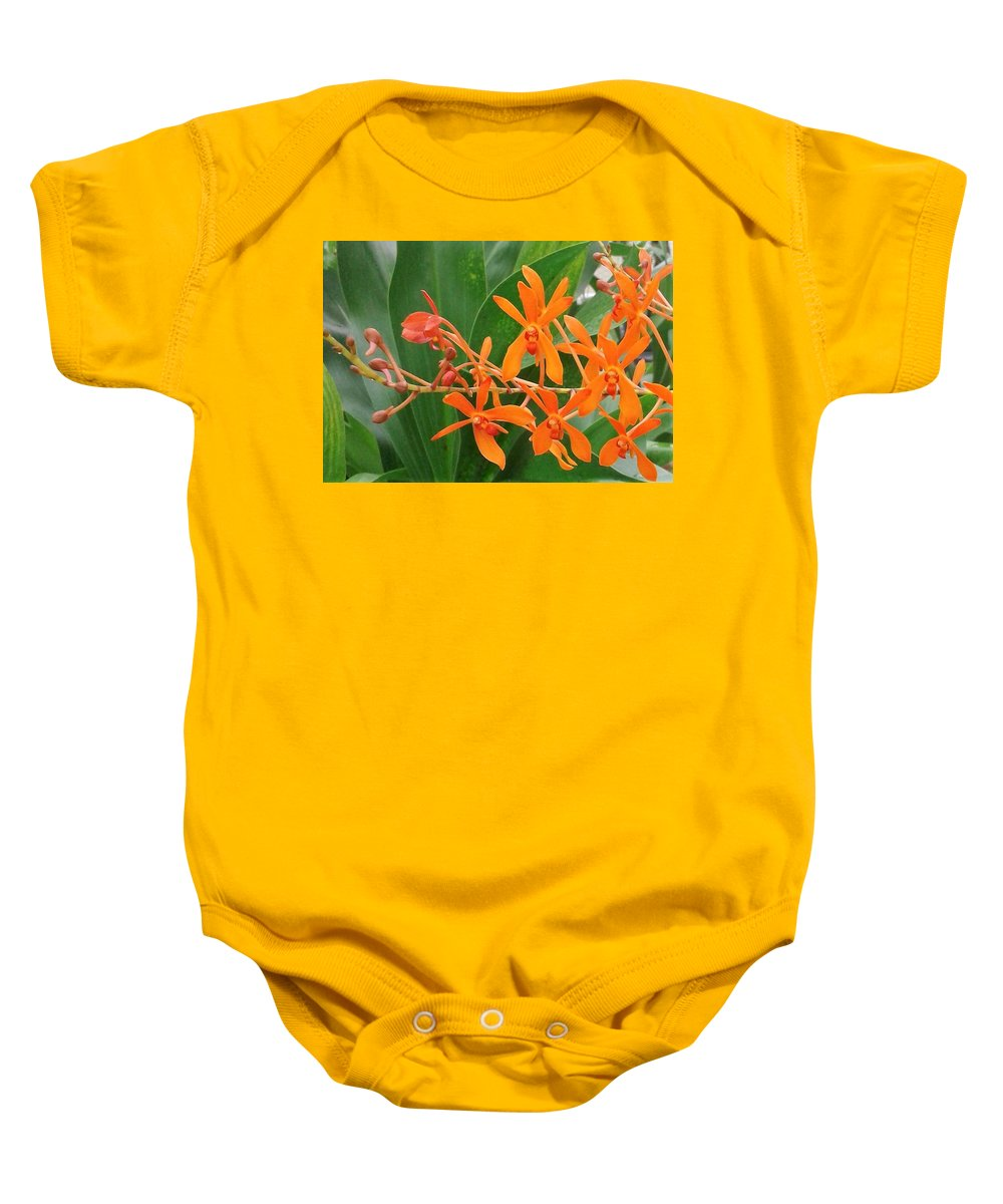 Orchidacea Baby Onesie featuring the photograph Renanthara Tom Thumb by Janice Dunlap