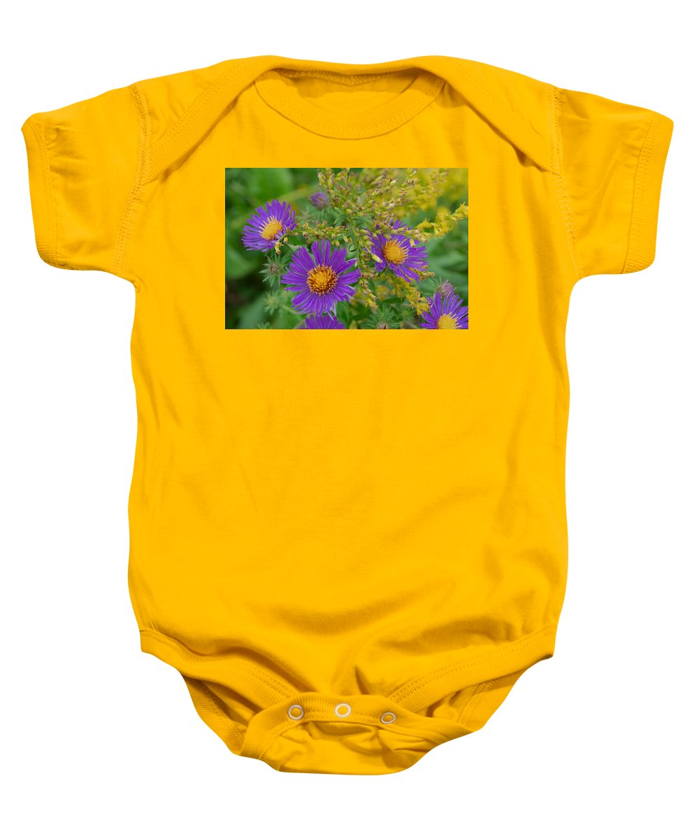 Flowers Baby Onesie featuring the photograph Summers Last Shout by Andrea Swiedler
