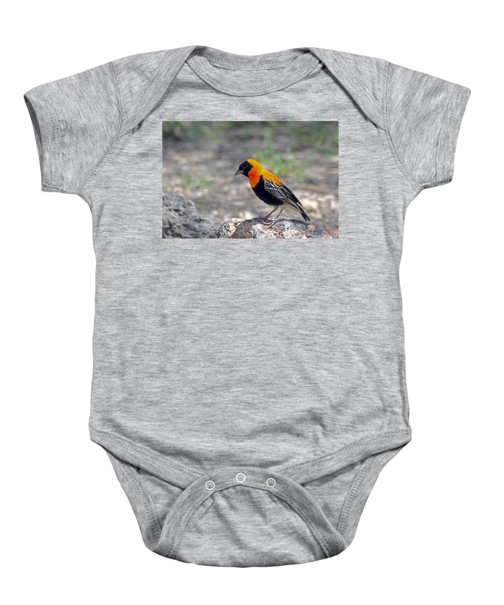 Black Bishop Baby Onesie featuring the photograph Black Bishop Weaver by Tony Murtagh