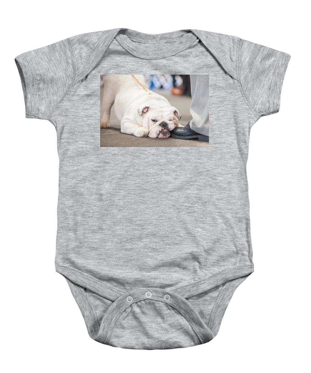 Dog Baby Onesie featuring the photograph A Shoe-in by Lance Pecchia