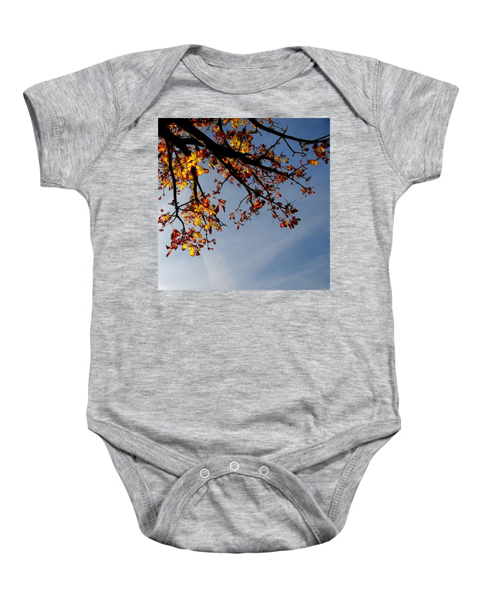 Abstract Baby Onesie featuring the photograph Autumn by TouTouke A Y