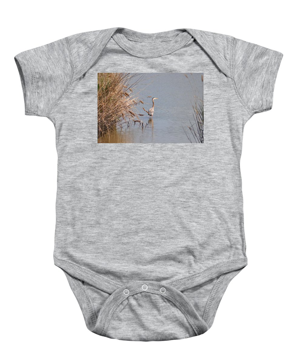 Blue Baby Onesie featuring the photograph Blue Heron In The Wild by Bill Cannon