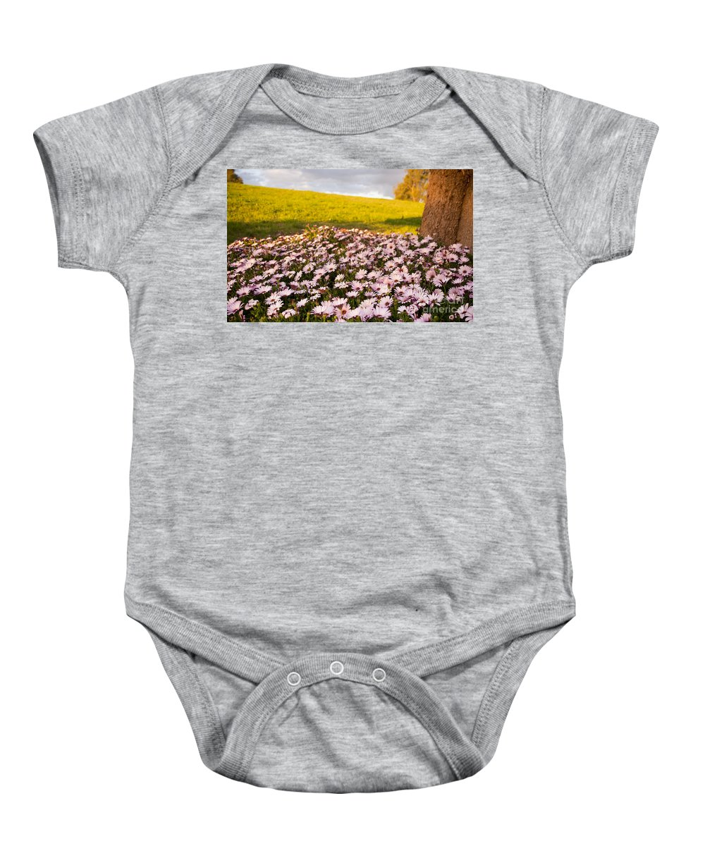 Background Baby Onesie featuring the photograph Daisies by Tim Hester