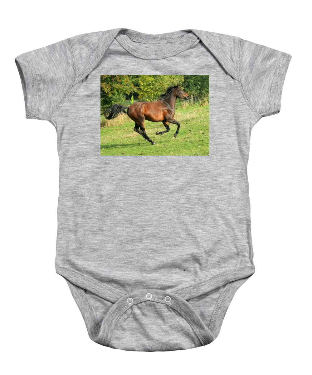 Horse Baby Onesie featuring the photograph Gallop by Angel Ciesniarska