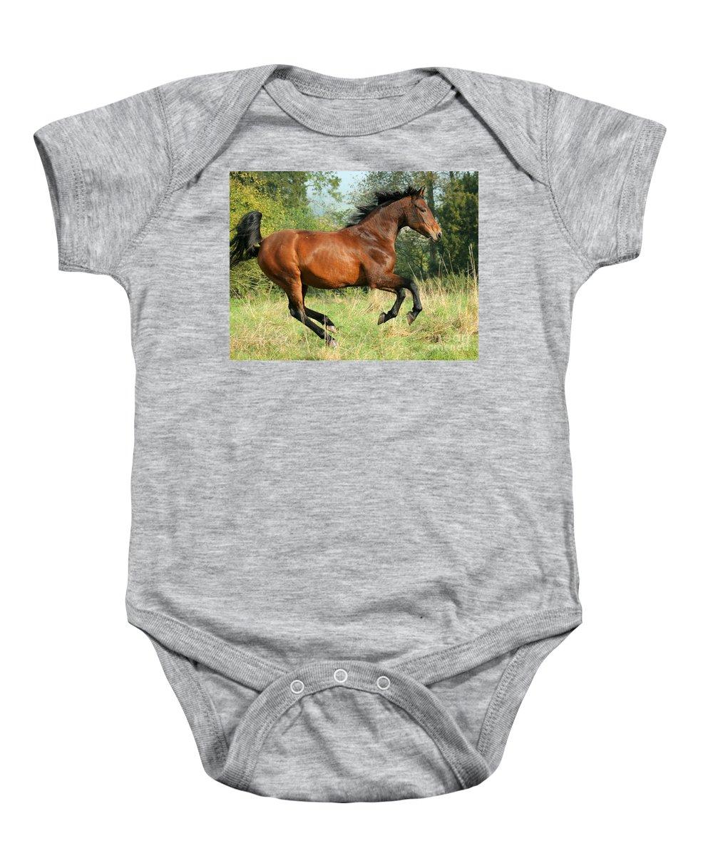 Horse Baby Onesie featuring the photograph Jump Jump by Angel Ciesniarska