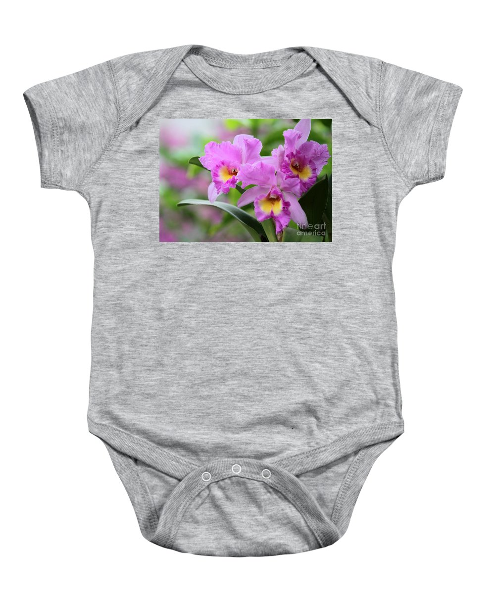 Orchid Baby Onesie featuring the photograph Pink Orchids by Sabrina L Ryan