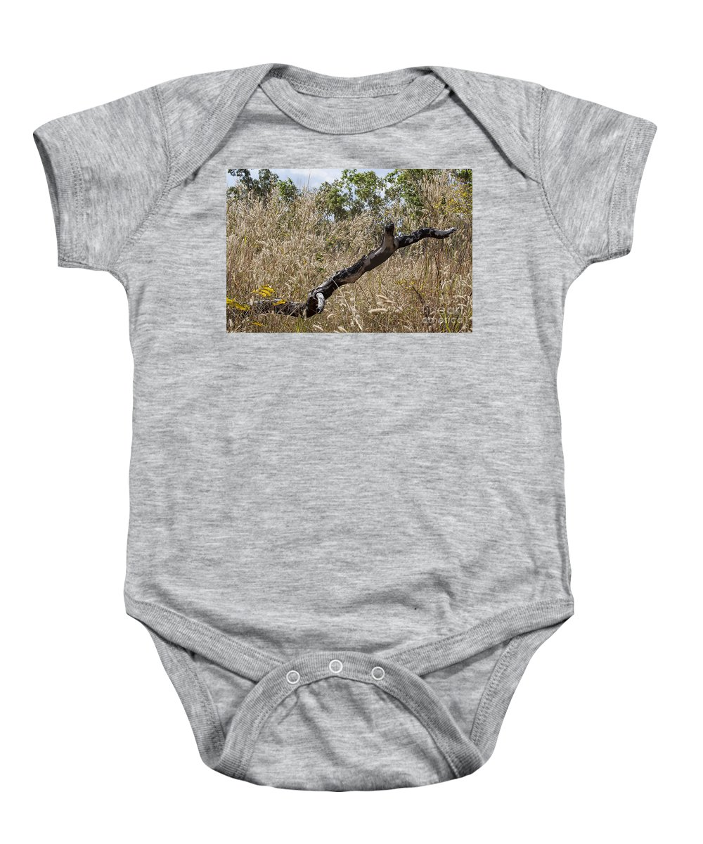 Death Baby Onesie featuring the photograph The Death Of A Tree V5 by Douglas Barnard