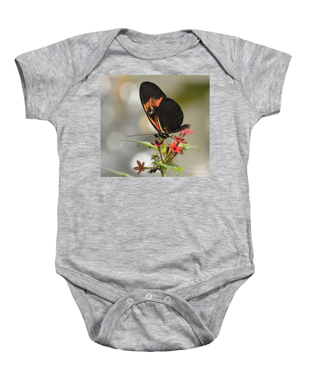 Butterfly Baby Onesie featuring the photograph Well Poised by Cindy Manero