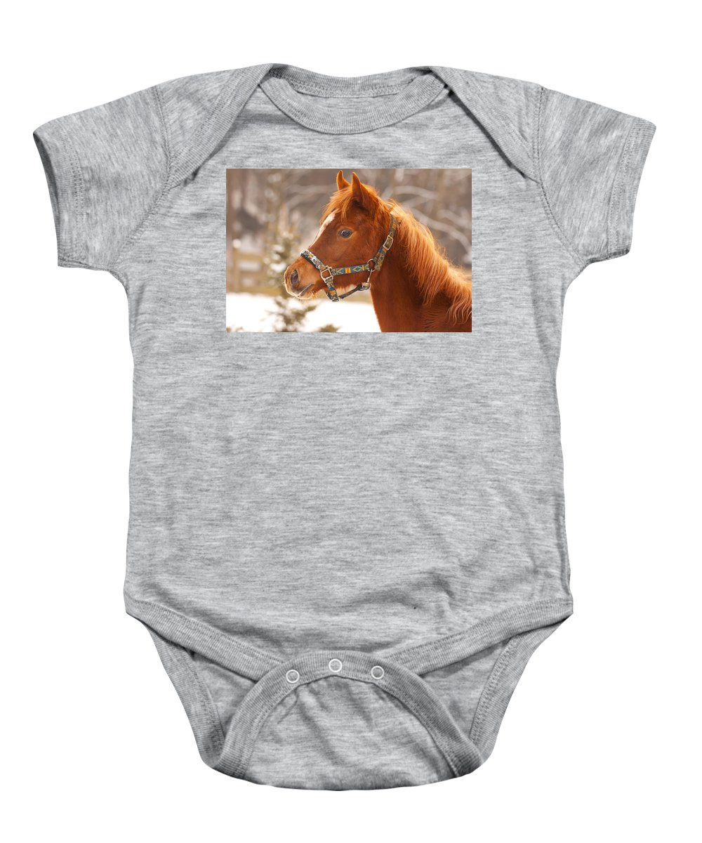 Animal Baby Onesie featuring the photograph Young Horse In Winter Day by Jaroslav Frank