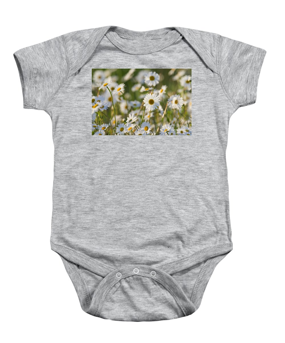 Oxeye Daisy Baby Onesie featuring the photograph 130215p282 by Arterra Picture Library