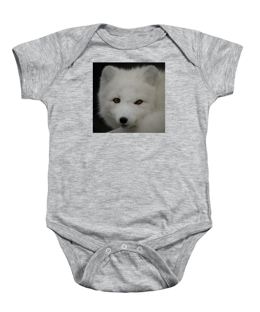 White Fox Baby Onesie featuring the photograph Arctic White Fox Vi by Athena Mckinzie