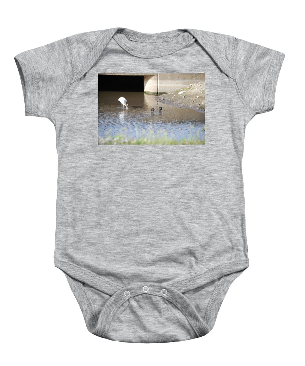 Group Feeding Hole Baby Onesie featuring the photograph Great White Heron by Robert Floyd