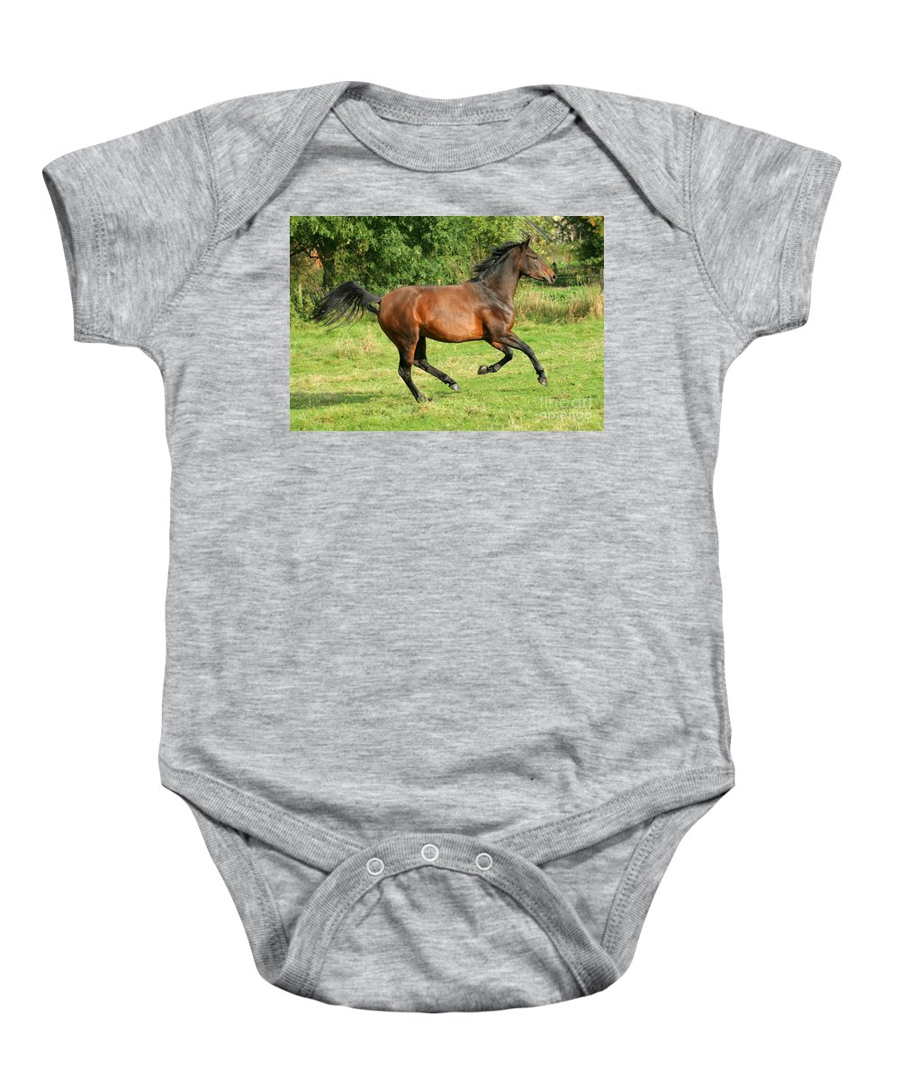 Horse Baby Onesie featuring the photograph Running Free by Angel Ciesniarska