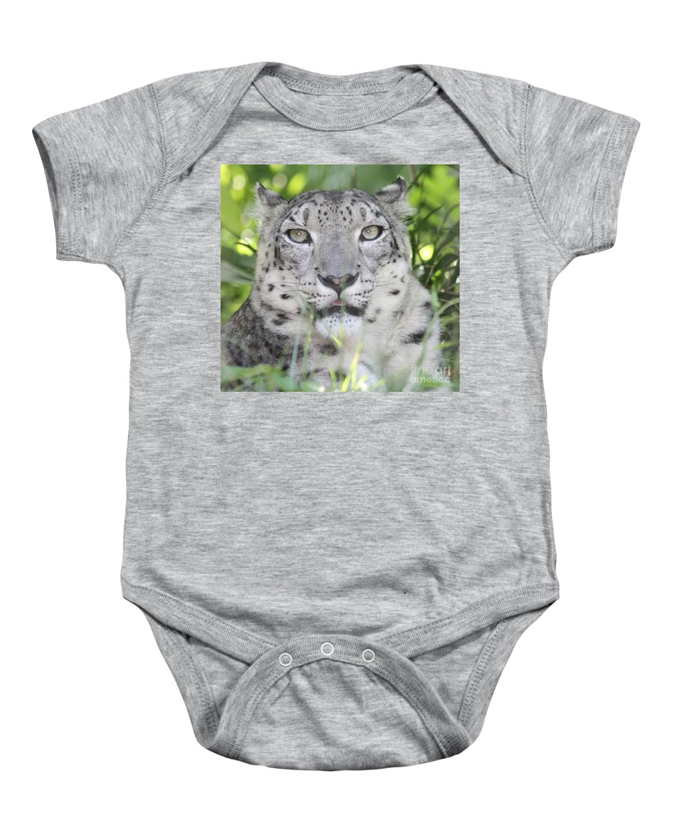 Snow Leopard Baby Onesie featuring the photograph Snow Leopard by John Telfer
