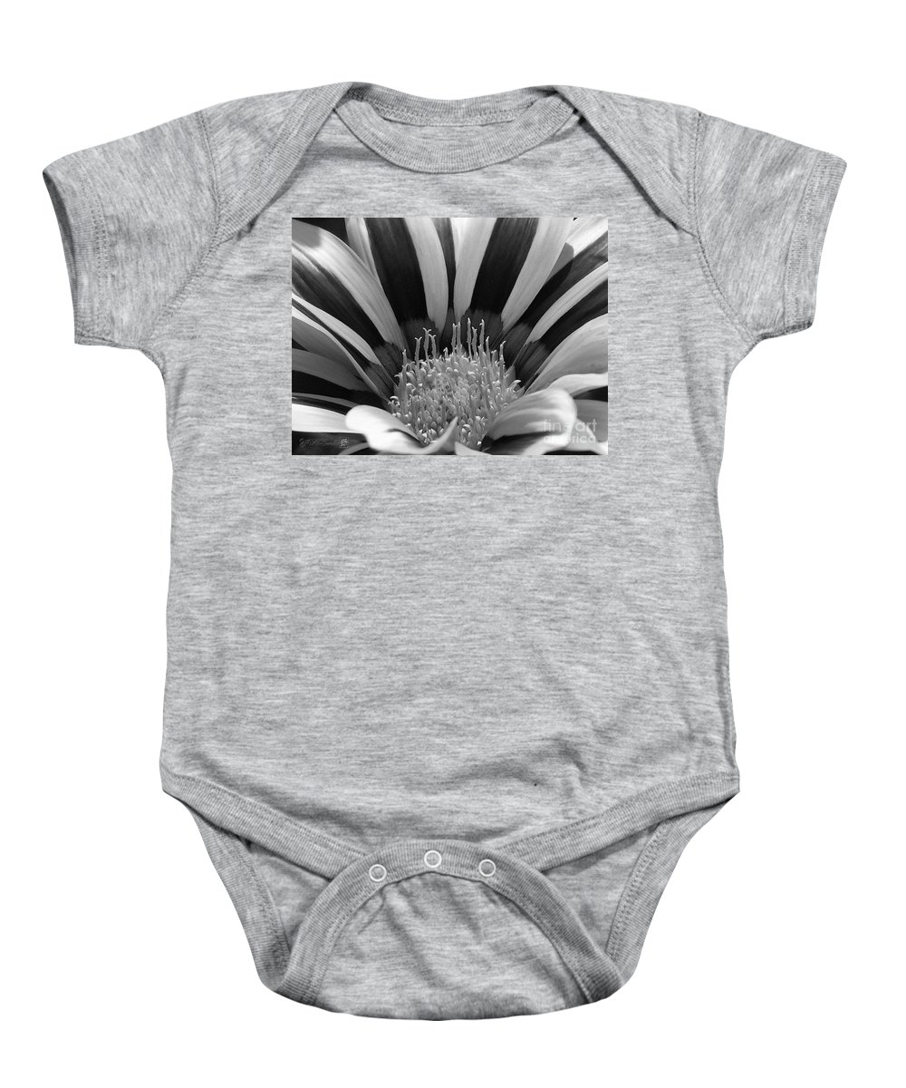 Mccombie Baby Onesie featuring the painting Gazania Named Big Kiss White Flame by J McCombie