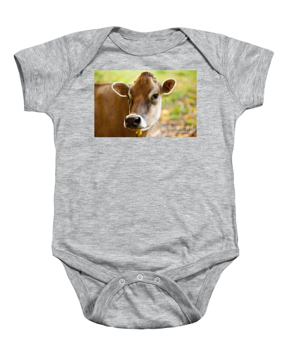 Jersey Baby Onesie featuring the photograph Happy Cow by Brian Jannsen